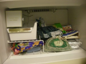 This is the freezer, sans frozen grapes for our road trip, the frozen meals I take to work, and my adventure in babyfood making.
