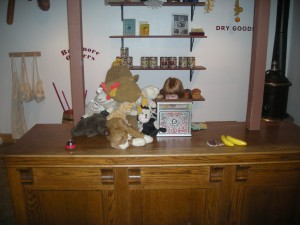 And she turned the general store into a pet shop.