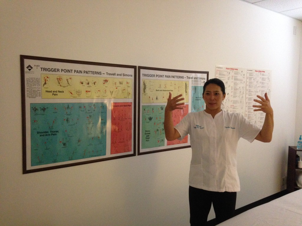 These posters show the trigger points for common ailments as Tomo discusses how muscles can contract and relax.